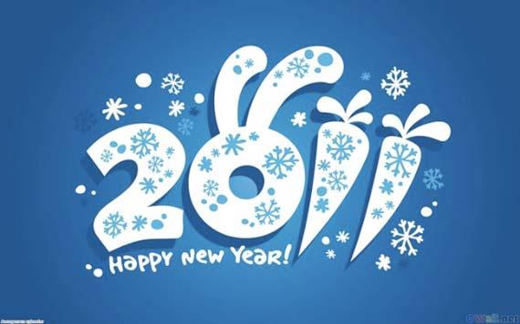 Tahun Baru 2011 Happy New Year 2011