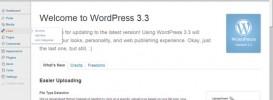 wordpress 3.3 273x100 Update Wordpress 3.3